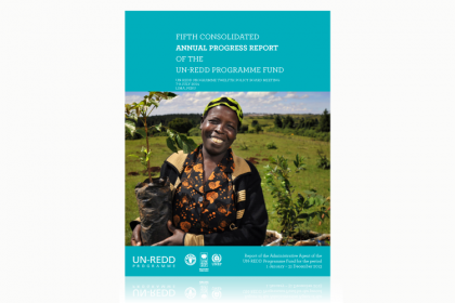 UN-REDD Annual Progress Report 2013, 2014 and 2015