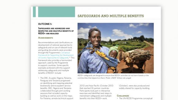 UN-REDD Annual Progress Report 2013, 2014 and 2015 - UN-REDD Annual Progress Report 2013, 2014 and 2015