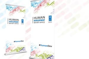 UNDP NY - Branding Materials for HDRO - UNDP NY - Branding Materials for HDRO