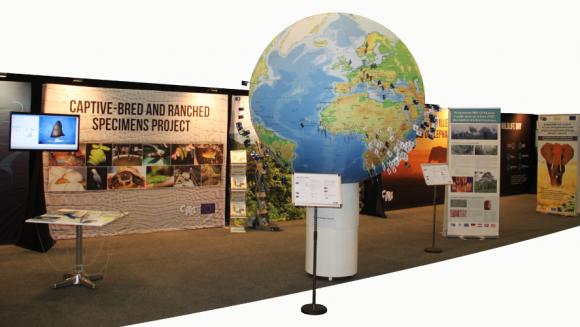 CITES - exhibition design and mantling - CITES - exhibition design and mantling