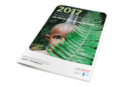 UN REDD Programme -  2017 Consolidated Annual Report