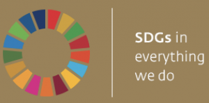 Sdg In Everything
